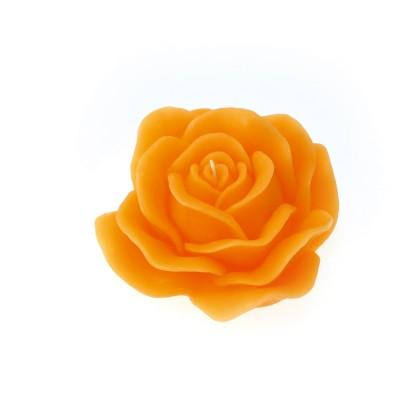 Rosa d. 170 mm in gift box con nastro